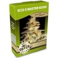 KC 33 x Master Kush